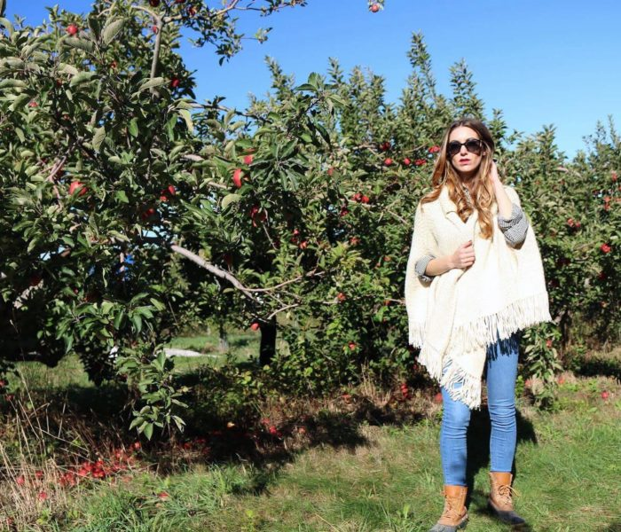Fall Gingham, Apple Picking