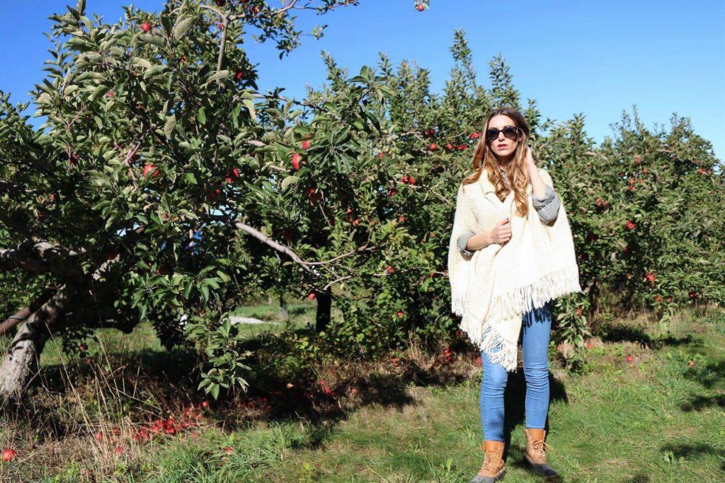 Fall Gingham Apple Picking